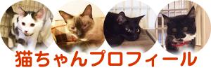 猫ちゃんプロフィール